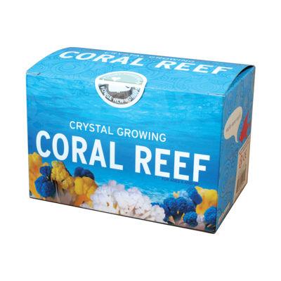 Copernicus Crystal Growing Coral Reef