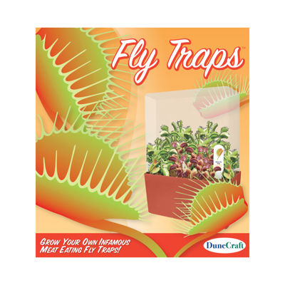 Dunecraft Fly Traps Plant Cube Kit