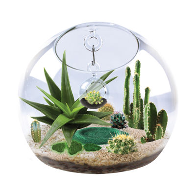 Dunecraft World Within a World Glass Terrarium - Cactus & Succulents