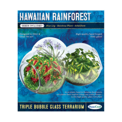 Dunecraft Triple Bubble Glass Terrarium - HawaiianRainforest