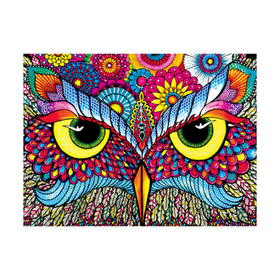 Buffalo Games Vivid Collection - Owl Eyes: 1000 Pcs