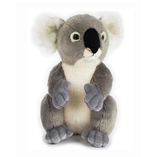National Geographic Basic Plush: Koala