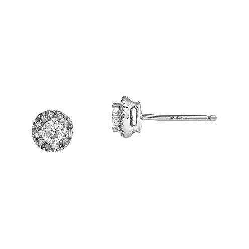 1/4 CT. T.W. Diamond 14K White Gold Earrings