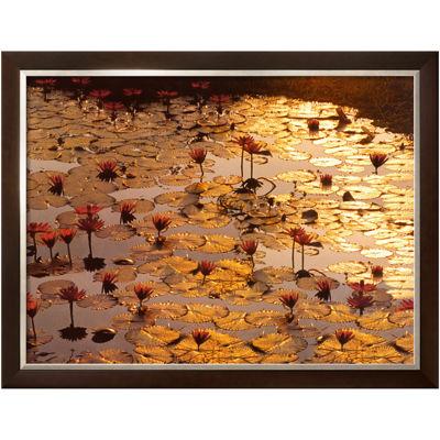 Art.com Lotus Pond Framed Print Wall Art