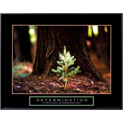 Art.com Determination Little Pine Framed Print Wall Art