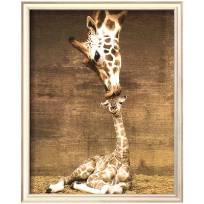 Art.com Giraffe First Kiss Framed Print Wall Art