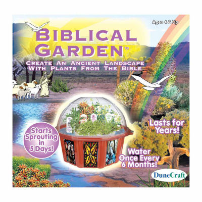 Dunecraft Dome Terrarium - Biblical Garden