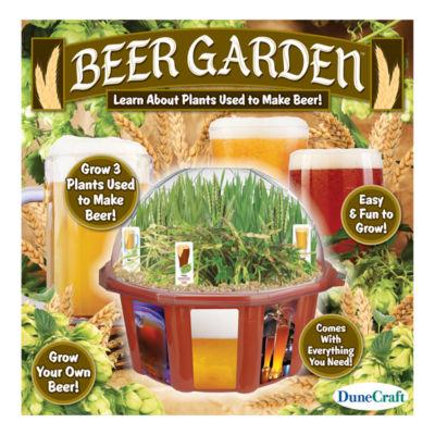 Dunecraft Beer Garden Dome Terrarium