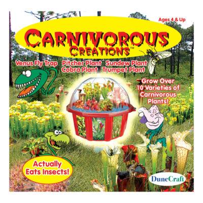 Dunecraft Dome Terrarium - Carnivorous Creations