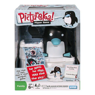 Hasbro Pictureka Flipper