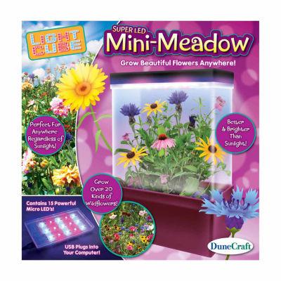 Dunecraft LED Light Cube Terrarium - Mini-Meadow