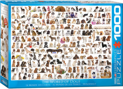 EuroGraphics The World of Birds by David Sibley 1000-Piece Puzzle