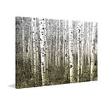 Aspen Highlands Painting Print on Wrapped Canvas