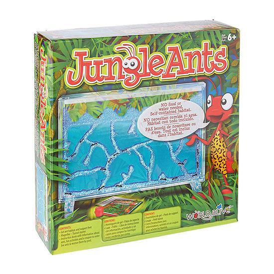 Jungle Ants Science Kit