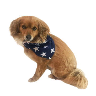 Americana Family Pet Clothes