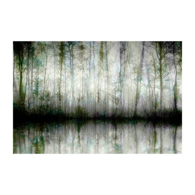 Wispy Trees Reflect Painting Print on Wrapped Canvas