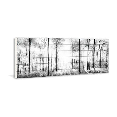 White Light Forest Painting Print on White Wood