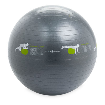 Gaiam Selfguided Stability Ball