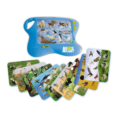 Smart Play 11-pc. Interactive Toy