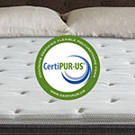Beautyrest Silver® BRS900-C™ Plush Pillow Top - Mattress + Box Spring