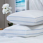 Sensorpedic Memoryloft Deluxe Gusseted Memory Foam Center with Down Alternative Medium Density Pillow