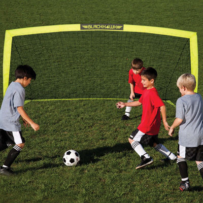 Franklin Sports 6x3' Fiberglass Blackhawk Goal