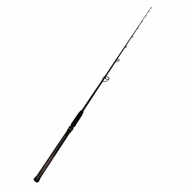 Penn International Spinning Rod