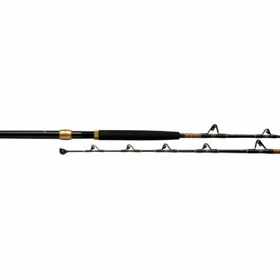 Penn International Baitcasting Rod