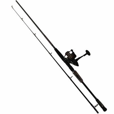 Penn International Spinning Combo Rod and Reel