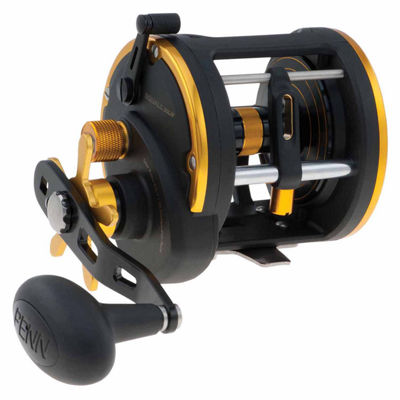 "Penn Squall Levelwind Conventional Reel 30 4.9:1 Gear Ratio 35"" Line Retrieve 20 lb Max Drag 3 Bearings Right Hand"""