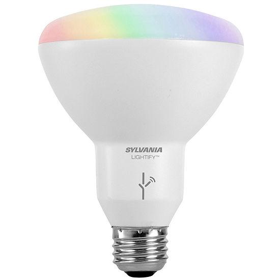 Smart Color Flood Light