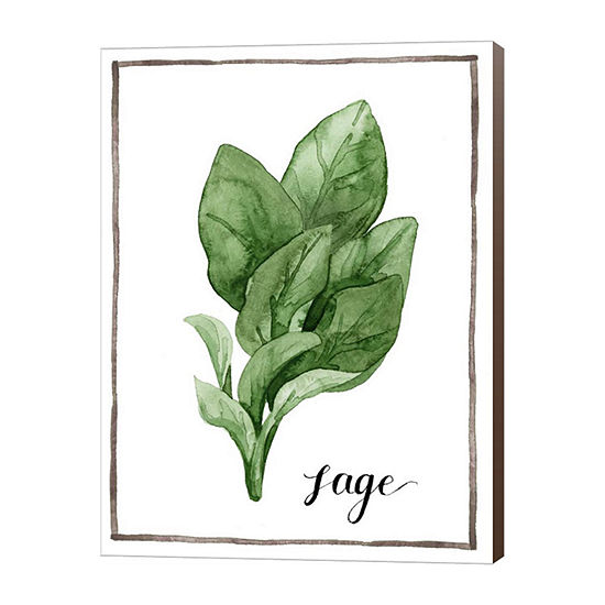 Metaverse Art Watercolor Herbs VI Canvas Wall Art