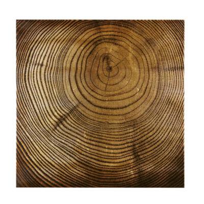 INK + IVY Wood Grain Canvas Art