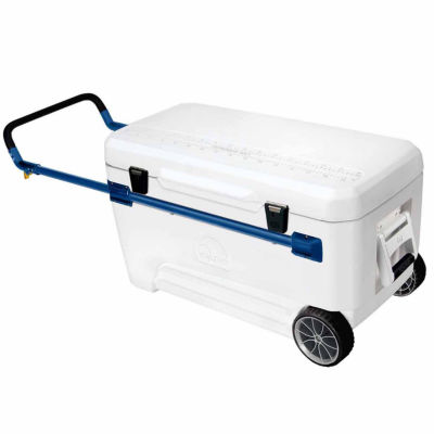 Igloo Hard Side Cooler