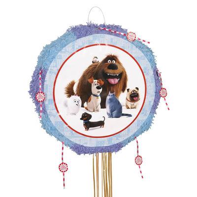 Secret Life of Pets Drum Pinata