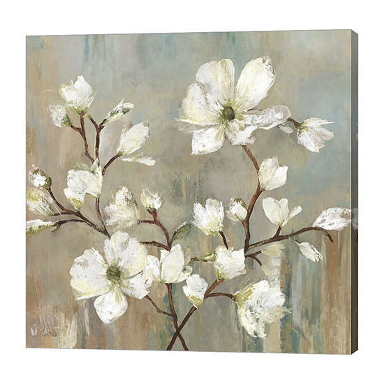 Metaverse Art Sweetbay Magnolia Ii Canvas Art