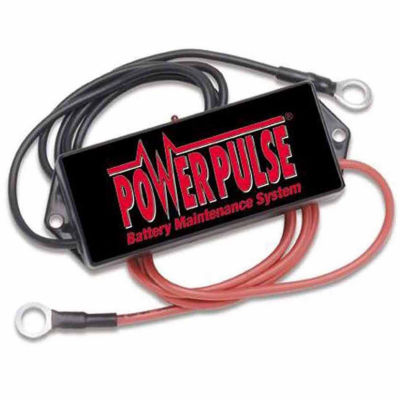 Pulsetech Powerpulse 36 Volt