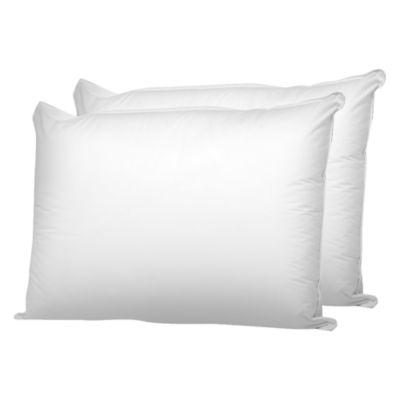 Queen Street Cotton Cover 2-Pack Medium Pillow