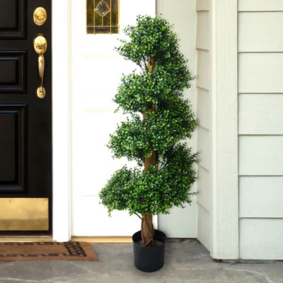 4' Potted Boxwood Topiary Tree