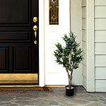 "41"" Potted Ixora Topiary Tree"