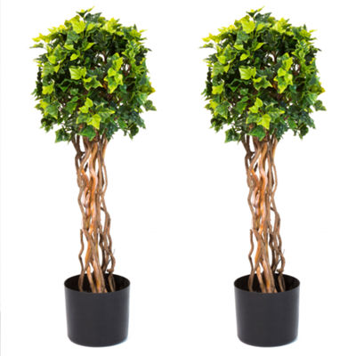 "Set Of 2 Potted 30"" English Ivy Topiary Trees"
