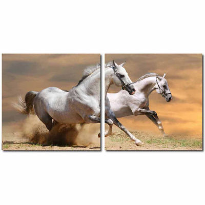 Galloping Grandeur Mounted  2-pc. Photography Print Diptych Set