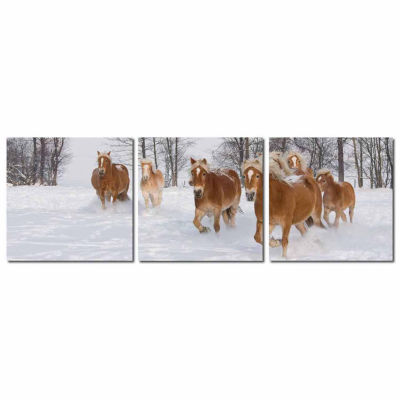 Horse Herd Mounted  3-pc. Photography Print Triptych Set