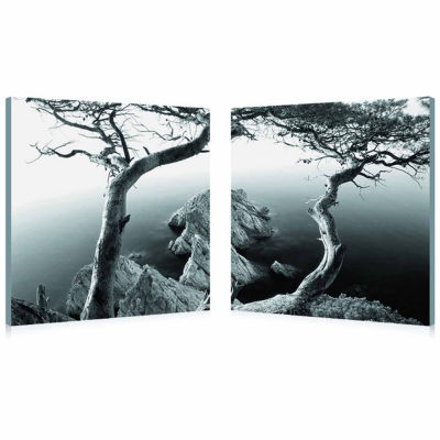Rocky Shore Mounted  2-pc. Photography Print Diptych Set