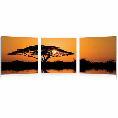 Savannah Sunset Mounted  3-pc. Photography Print Triptych Set