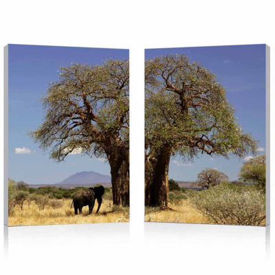 Tree of Life Mounted  2-pc. Photography Print Diptych Set