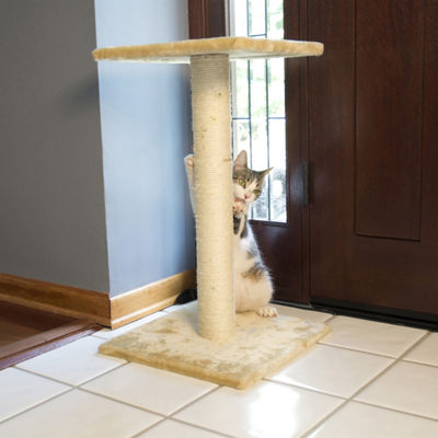 Iconic Pet Sisal Cat Scratching Post