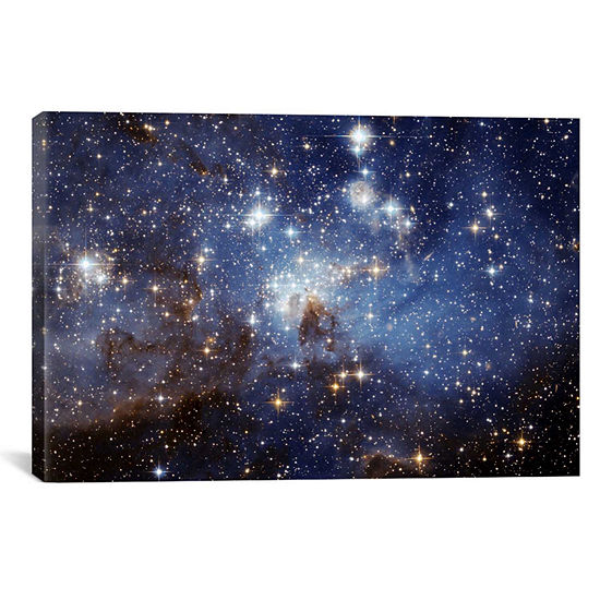 Icanvas Lh-95 Stellar Nursery Canvas Art