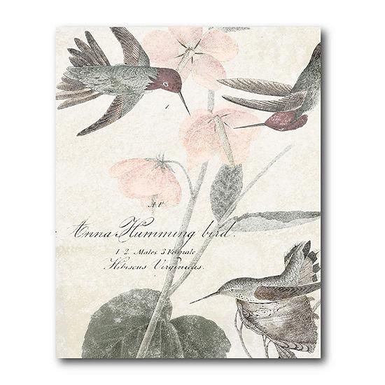 Courtside Market Soft Hummingbirds Canvas Art