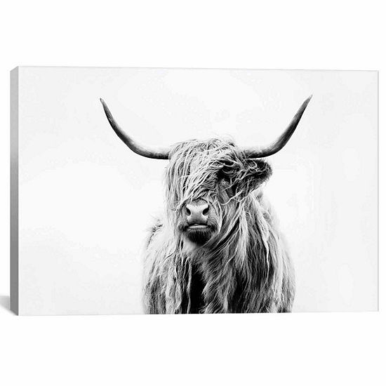 Icanvas Portrait Of A Highland Cow Canvas Art